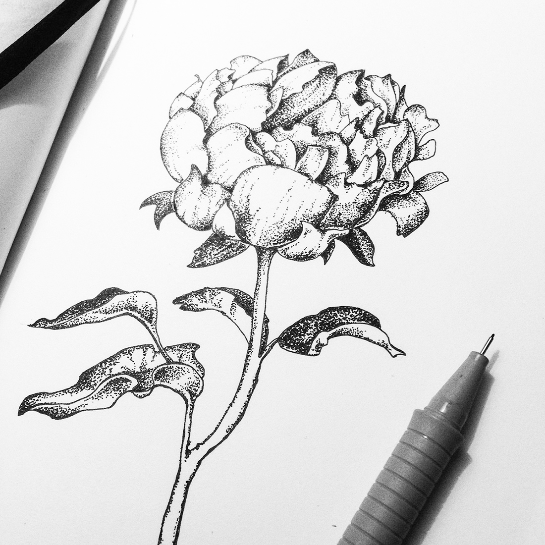 dotwork-flowers-and-leaves-handdrawn