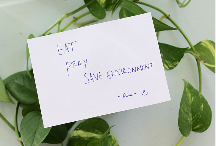 the-climate-cards-eat-pray-save